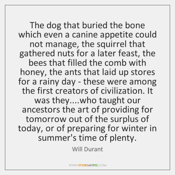 The dog that buried the bone which even a canine appetite could ...