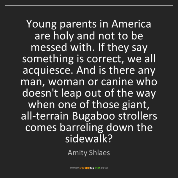 Amity Shlaes: Young parents in America are holy and not to be messed...