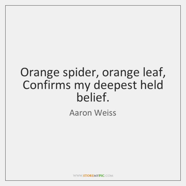 Orange spider, orange leaf,   Confirms my deepest held belief.
