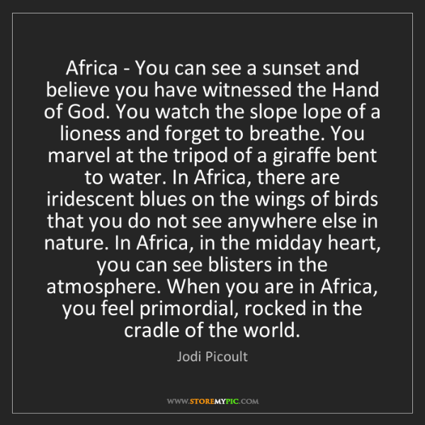 Jodi Picoult: Africa - You can see a sunset and believe you have witnessed...