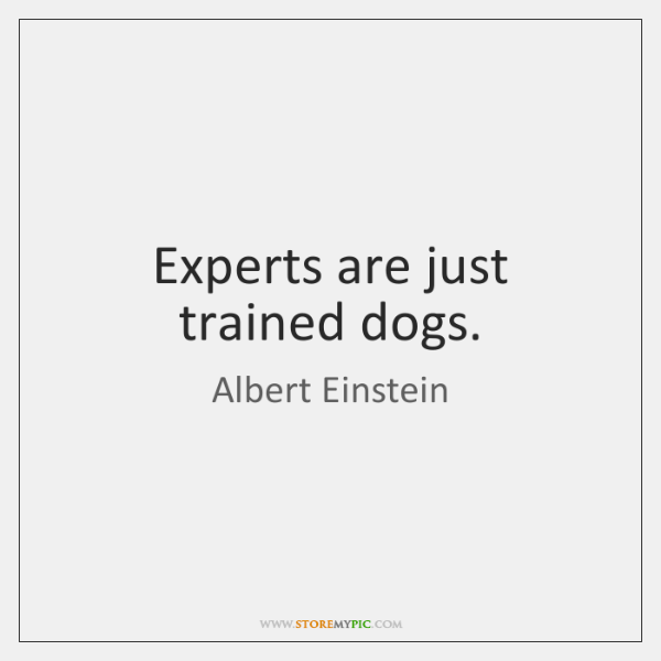 Experts are just trained dogs.