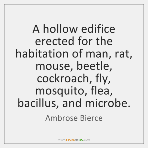 A hollow edifice erected for the habitation of man, rat, mouse, beetle, ...