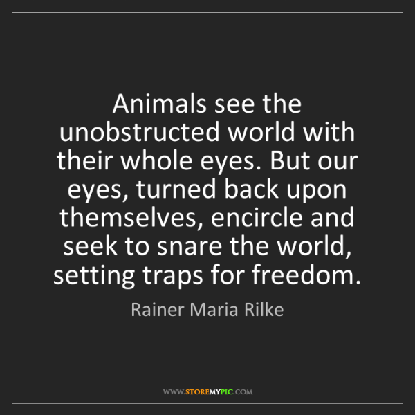 Rainer Maria Rilke: Animals see the unobstructed world with their whole eyes....