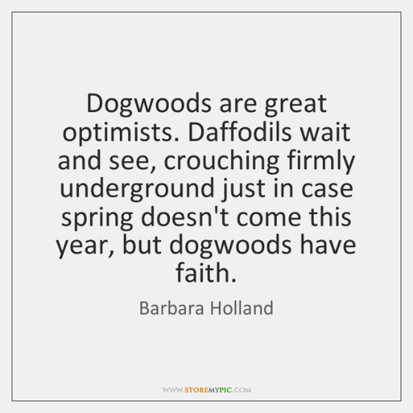 Dogwoods are great optimists. Daffodils wait and see, crouching firmly underground just ...