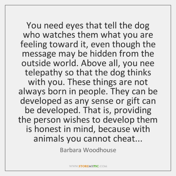 You need eyes that tell the dog who watches them what you ...