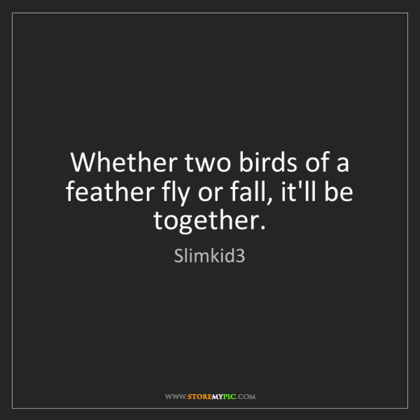 Slimkid3: Whether two birds of a feather fly or fall, it'll be...