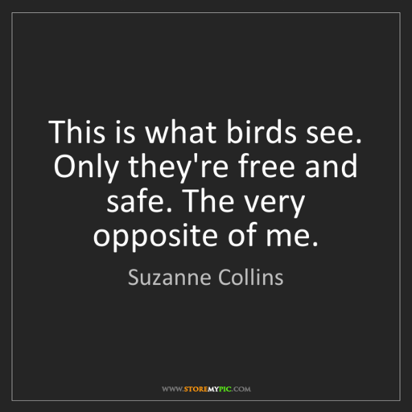 Suzanne Collins: This is what birds see. Only they're free and safe. The...