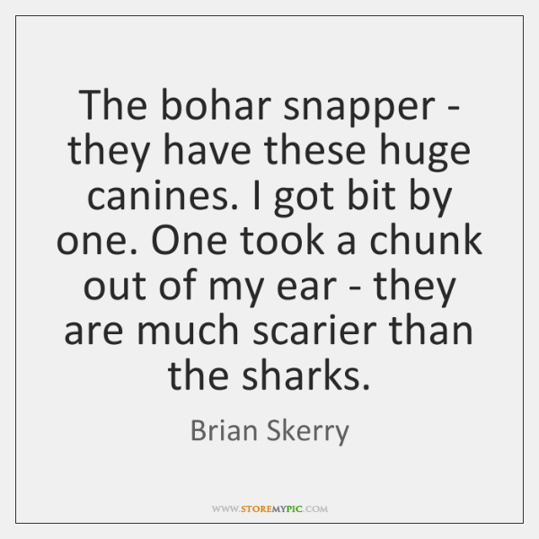 The bohar snapper - they have these huge canines. I got bit ...