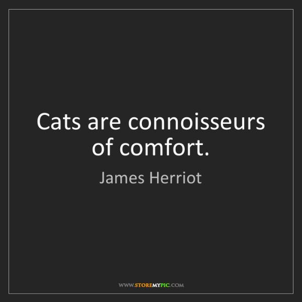James Herriot: Cats are connoisseurs of comfort.
