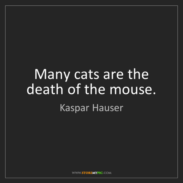 Kaspar Hauser: Many cats are the death of the mouse.