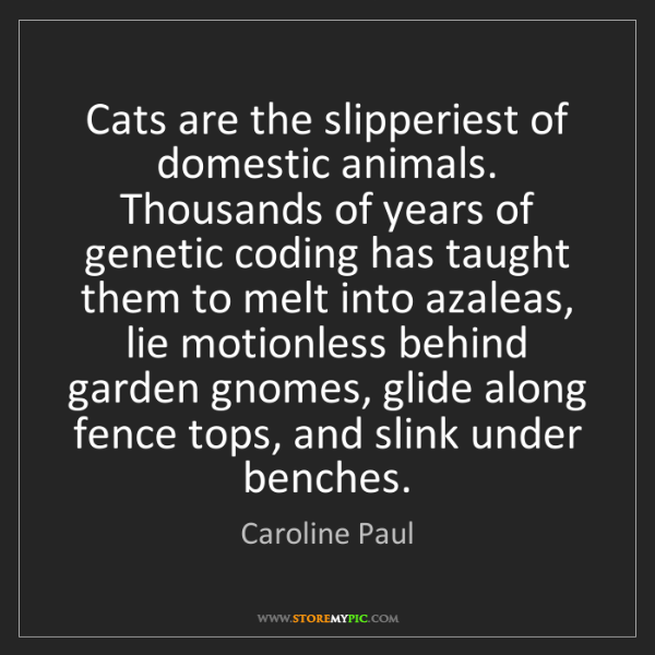 Caroline Paul: Cats are the slipperiest of domestic animals. Thousands...