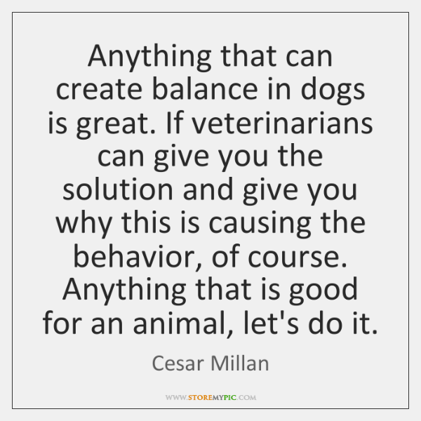 Anything that can create balance in dogs is great. If veterinarians can ...
