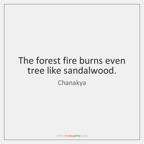 The forest fire burns even tree like sandalwood.