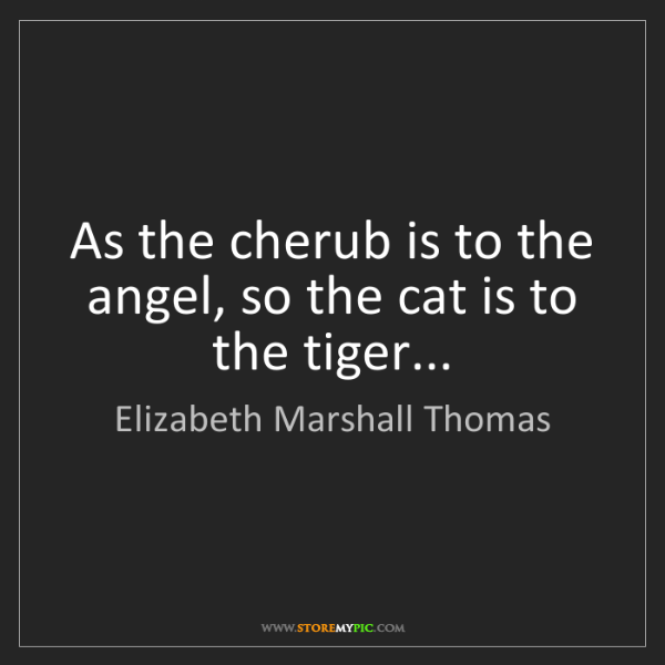 Elizabeth Marshall Thomas: As the cherub is to the angel, so the cat is to the tiger...
