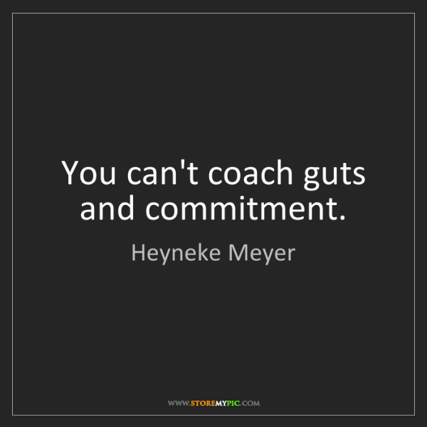 Heyneke Meyer: You can't coach guts and commitment.