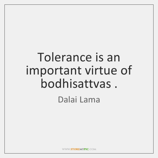 Tolerance is an important virtue of bodhisattvas .