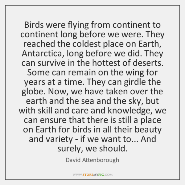 Birds were flying from continent to continent long before we were. They ...