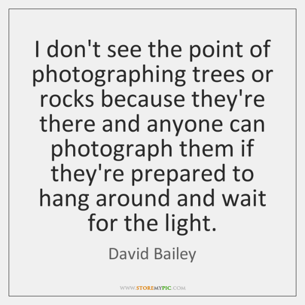 I don't see the point of photographing trees or rocks because they're ...
