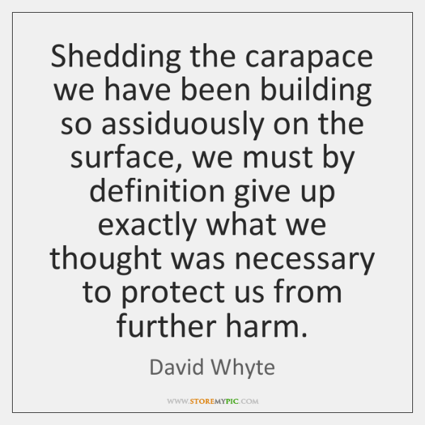 Shedding the carapace we have been building so assiduously on the surface, ...