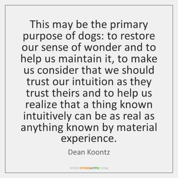 This may be the primary purpose of dogs: to restore our sense ...