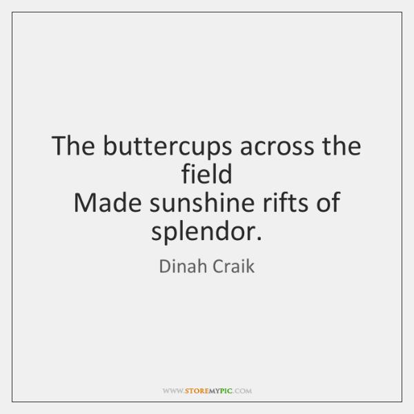 The buttercups across the field   Made sunshine rifts of splendor.