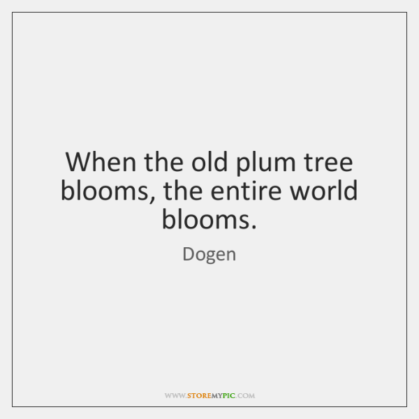 When the old plum tree blooms, the entire world blooms.