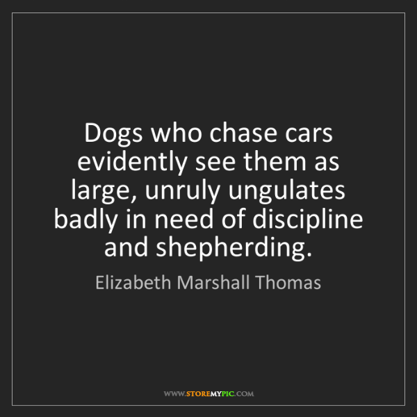 Elizabeth Marshall Thomas: Dogs who chase cars evidently see them as large, unruly...