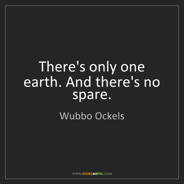 Wubbo Ockels: There's only one earth. And there's no spare.