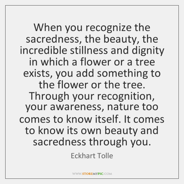 When you recognize the sacredness, the beauty, the incredible stillness and dignity ...