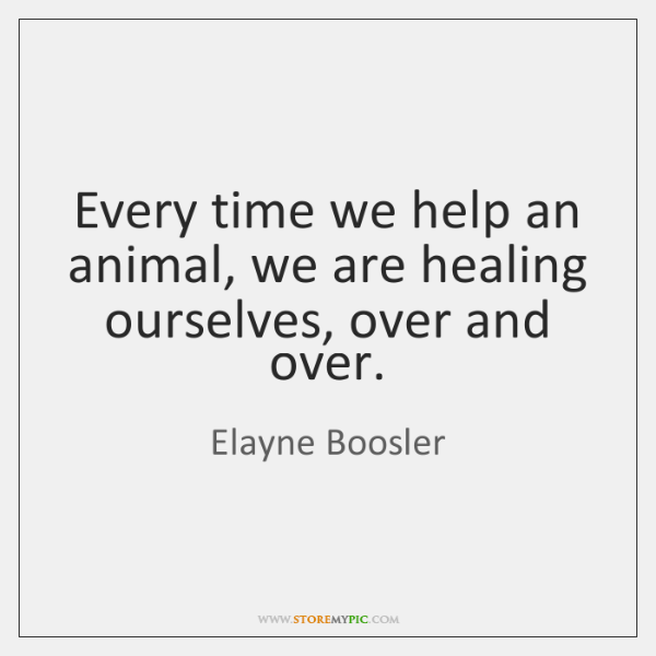 Every time we help an animal, we are healing ourselves, over and ...