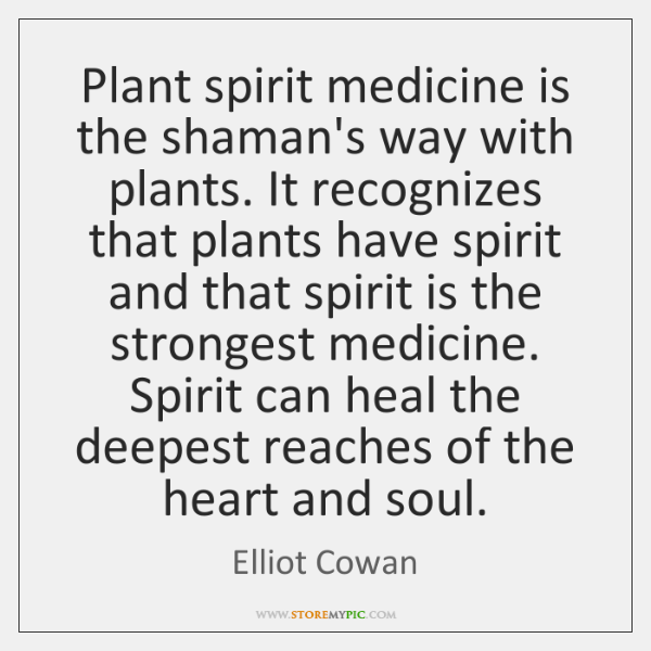 Plant spirit medicine is the shaman's way with plants. It recognizes that ...