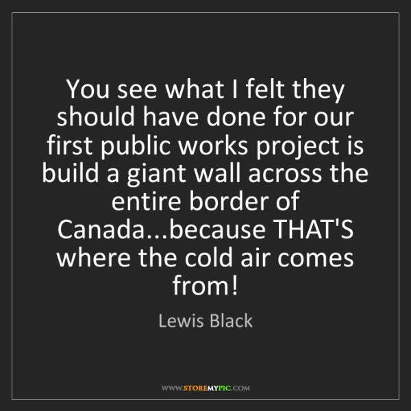 Lewis Black: You see what I felt they should have done for our first...
