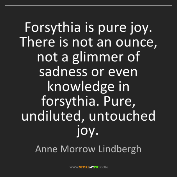 Anne Morrow Lindbergh: Forsythia is pure joy. There is not an ounce, not a glimmer...