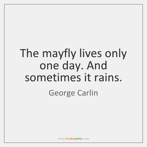 The mayfly lives only one day. And sometimes it rains.