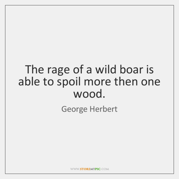 The rage of a wild boar is able to spoil more then ...
