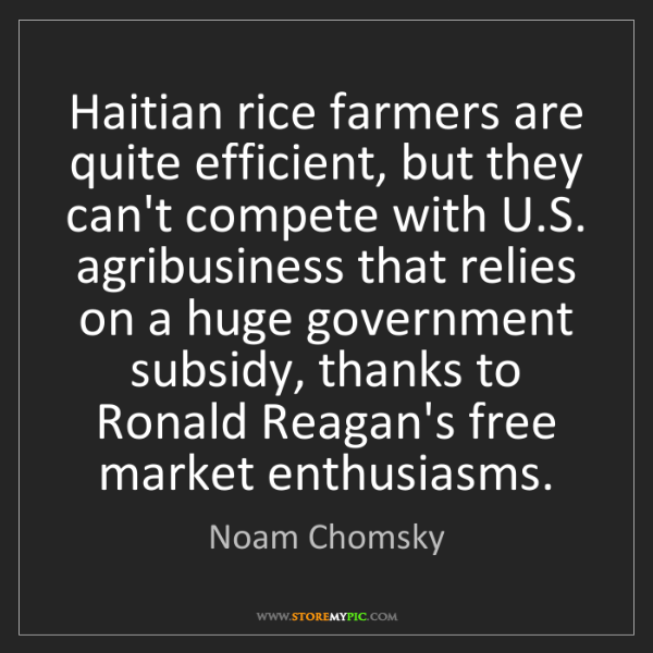Noam Chomsky: Haitian rice farmers are quite efficient, but they can't...