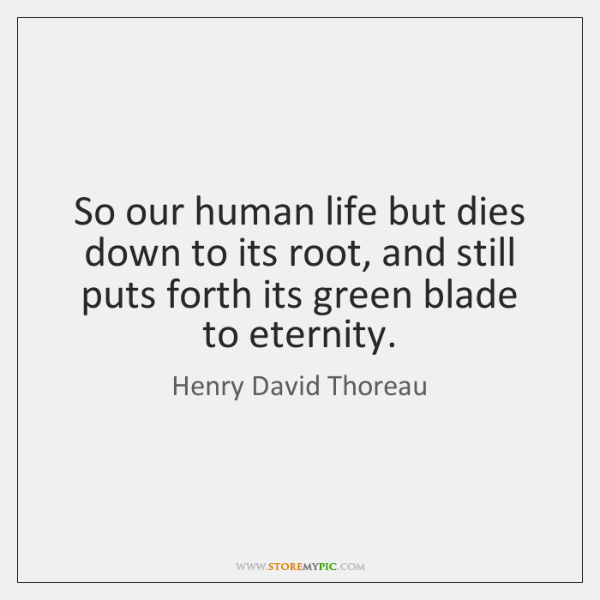 So our human life but dies down to its root, and still ...