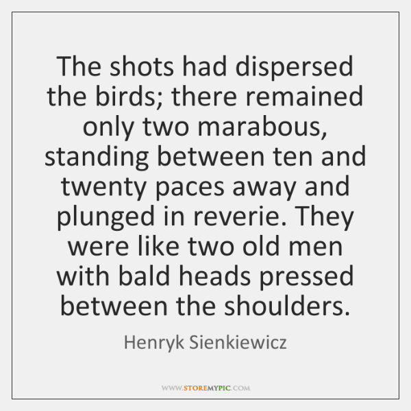 The shots had dispersed the birds; there remained only two marabous, standing ...