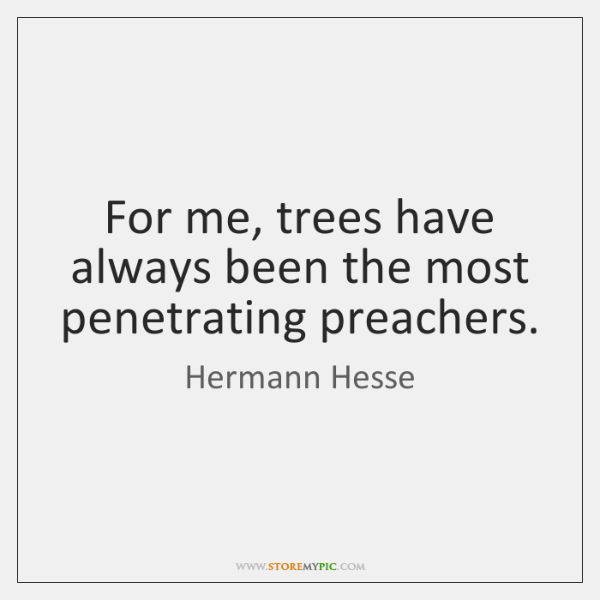 For me, trees have always been the most penetrating preachers.