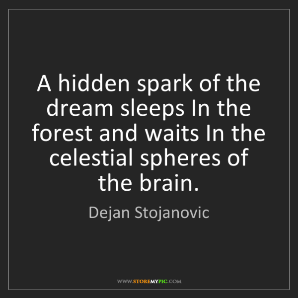 Dejan Stojanovic: A hidden spark of the dream sleeps In the forest and...