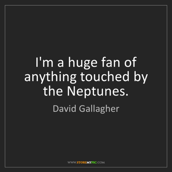 David Gallagher: I'm a huge fan of anything touched by the Neptunes.
