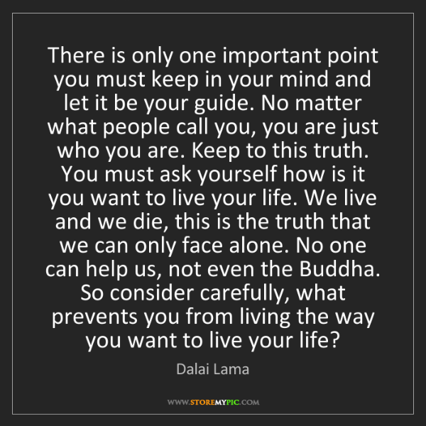 Dalai Lama: There is only one important point you must keep in your...