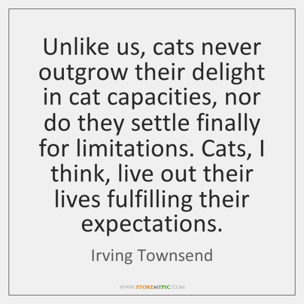 Unlike us, cats never outgrow their delight in cat capacities, nor do ...