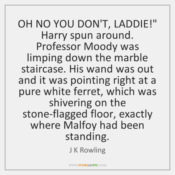 "OH NO YOU DON'T, LADDIE!"" Harry spun around. Professor Moody was limping ..."