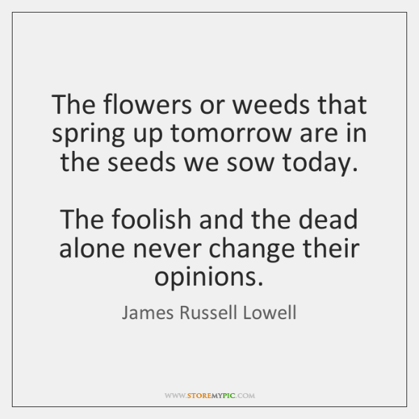 The flowers or weeds that spring up tomorrow are in the seeds ...