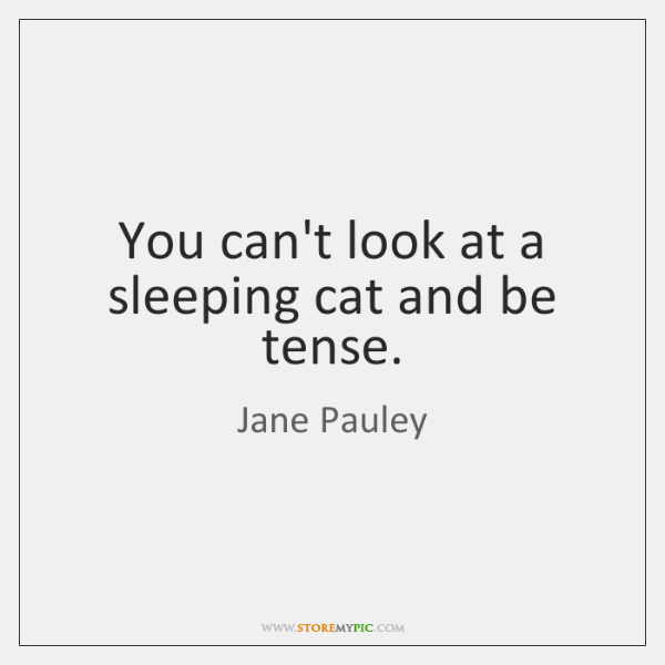 You can't look at a sleeping cat and be tense.