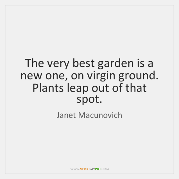 The very best garden is a new one, on virgin ground. Plants ...