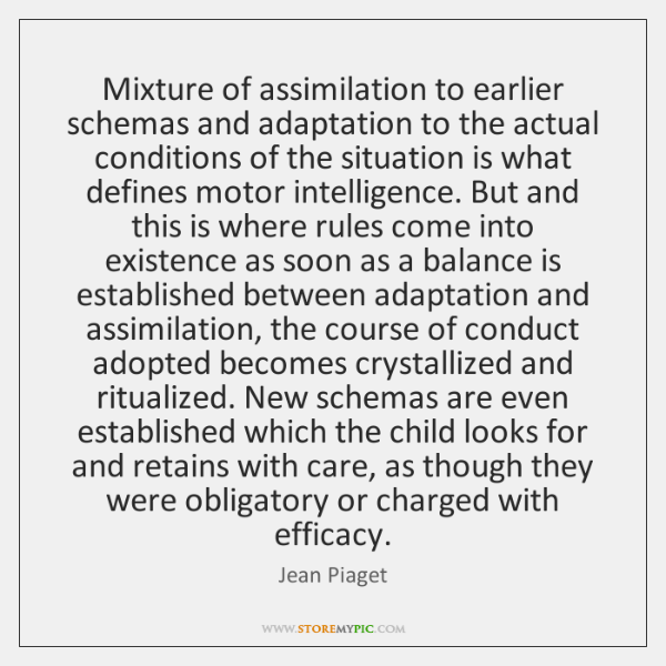 Mixture of assimilation to earlier schemas and adaptation to the actual conditions ...