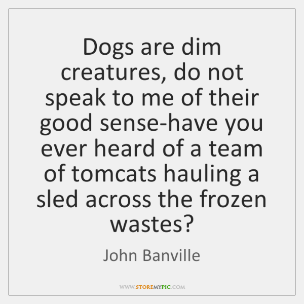 Dogs are dim creatures, do not speak to me of their good ...