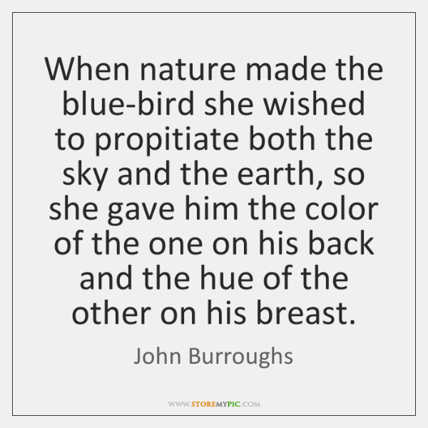 When nature made the blue-bird she wished to propitiate both the sky ...